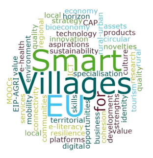 Fachexpertise Smart Village